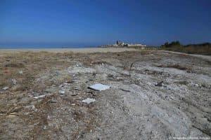 Opere di pulizia della fascia costiera presso la Tonnara Tipa