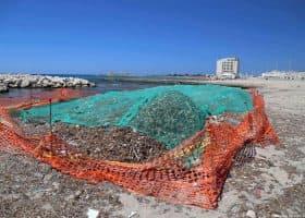 Opere di pulizia della spiaggia nei pressi di Cavallino bianco