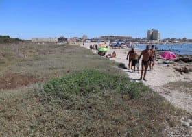Spiaggia di Cavallino bianco nel periodo estivo