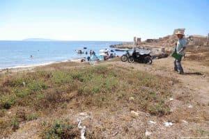 Effetti del calpestio estivo sulla vegetazione costiera nei pressi della Tonnara di San Giuliano