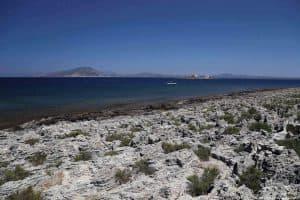 L'habitat roccioso dell'isolotto di Maraone