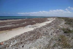 Spiaggia sull'Isola Lunga