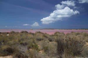 Saline di Isola Lunga