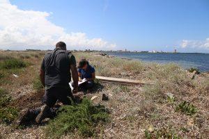 Descrizione del profilo del suolo nel sito di Isola Lunga