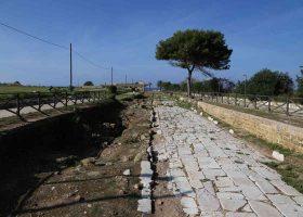 Incontro con gli stakeholders Azioni A4 E5 E10, visita al parco archeologico di Lilibeo, Marsala